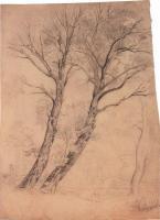 Деревья. 1850-е