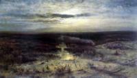 Лунная ночь. Болото. 1870