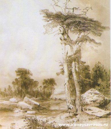 Старые сосны (Саврасов А.К.)
