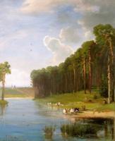 Сосновый бор на берегу реки. 1890-е