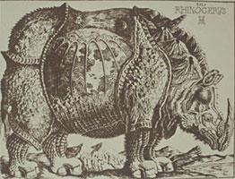 Носорог (Дмитрий Плавинский, 1995 г.)